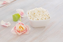 Cottage cheese with pink and white tulip Royalty Free Stock Photography