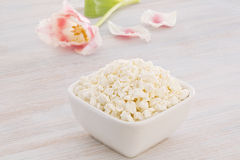 Cottage cheese with pink and white tulip Stock Photography