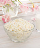 Cottage cheese with pink and white tulips Royalty Free Stock Photos