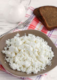 Cottage cheese on a plate. For breakfast stock photo