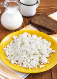 Cottage cheese on a plate. For breakfast royalty free stock photo