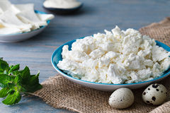 Cottage cheese plate with quail eggs. Dairy breakfast: a portion of some cottage cheese in a blue plate, a couple of quail eggs, sheep cheese (brynza), a saucer Stock Photo