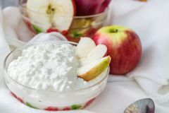 Cottage cheese plate with slices of Apple stock image