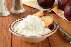 Cottage cheese and plums Stock Photography