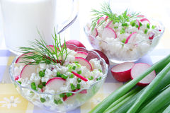 Cottage cheese with radish Stock Photo