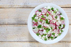 Cottage cheese with radish Stock Image