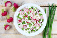 Cottage cheese with radish Royalty Free Stock Photo