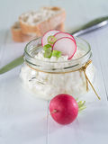 Cottage cheese with radish. On a tray Royalty Free Stock Images