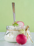Cottage cheese with radish Royalty Free Stock Photography
