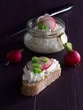 Cottage cheese with radish Stock Image