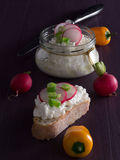 Cottage cheese with radish Stock Photos