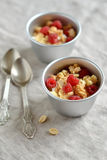 Cottage cheese with raspberries and biscuit crumbs Stock Images