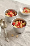 Cottage cheese with raspberries and biscuits. On a grey surface Stock Photos