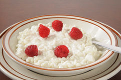 Cottage cheese with raspberries. A bowl of cottage cheese with fresh raspberries Royalty Free Stock Images