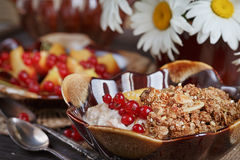 Cottage cheese, red currant and fresh peaches Royalty Free Stock Photography