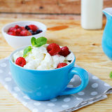 Cottage cheese and ripe berries Royalty Free Stock Photography