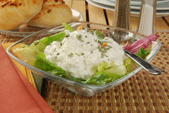 Cottage cheese salad Stock Photos