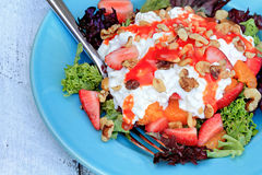 Cottage Cheese Salad Royalty Free Stock Images