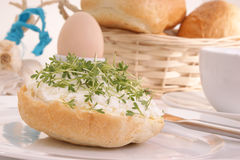 Cottage cheese with some watercress. And one egg Royalty Free Stock Images