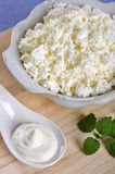Cottage cheese with sour cream Royalty Free Stock Photo