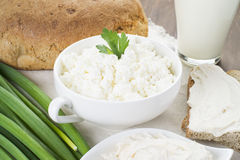 Cottage cheese with sour cream, milk, onion and bread. Posted in white plate on tablecloth and decorated with greenery Stock Photos