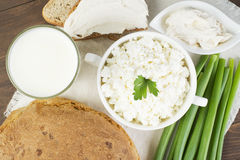 Cottage cheese with sour cream, milk, onion and bread. Posted in white plate on tablecloth and decorated with greenery Stock Image