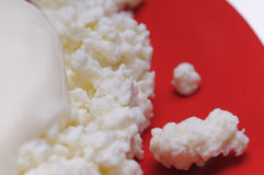 Cottage cheese with soured cream. Stock Photo