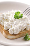 Cottage Cheese Toast Stock Images