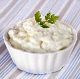 Cottage Cheese in White Dish Stock Images
