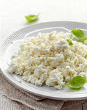 Cottage cheese on white plate Royalty Free Stock Photography