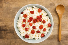 Cottage cheese with wild strawberry Royalty Free Stock Photos