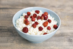 Cottage cheese with wild strawberry Royalty Free Stock Photography