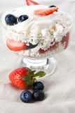 Cottage Cheese With Fresh Berries Royalty Free Stock Image