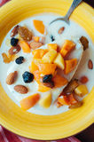 Cottage cheese with yogurt and fruits. Cottage cheese with apricots, raisins, almonds and fermented baked milk Royalty Free Stock Image