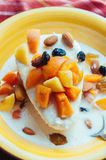 Cottage cheese with yogurt and fruits. Cottage cheese with apricots, raisins, almonds and fermented baked milk Stock Image