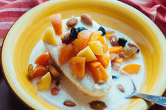 Cottage cheese with yogurt and fruits. Cottage cheese with apricots, raisins, almonds and fermented baked milk Royalty Free Stock Photography
