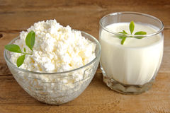 Cottage cheese and yogurt Stock Image