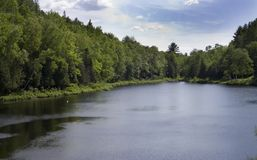 Cottage Country. Scenic view of a lake in cottage country royalty free stock photo
