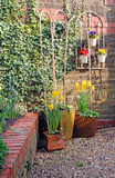Cottage courtyard walled garden Royalty Free Stock Photography