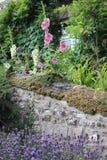 Cottage couvert de chaume en Angleterre rurale en été Image stock
