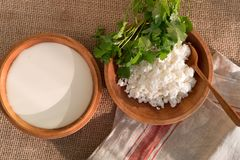 Cottage curd and sour cream in wooden bowls with parsley and cilantro Stock Photography