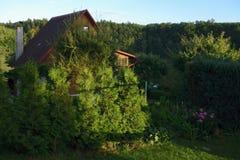 Cottage dans l'environnement de forêt Photographie stock