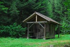 Cottage dans la forêt Image stock
