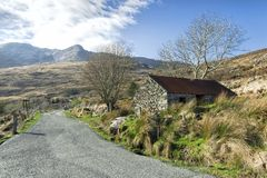 Cottage de famine, Gap de Dunloe, Irlande Photos libres de droits