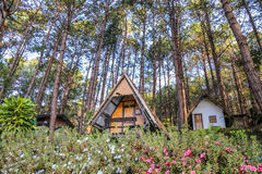 Cottage de touristes chez Pang Ung, Mae Hong Son, Thaïlande Photo libre de droits