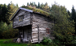 Cottage del pescatore nel legno in Norvegia. Fotografia Stock Libera da Diritti