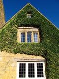 Cottage del villaggio di Cotswolds Inghilterra Broadway coperto in edera immagine stock libera da diritti