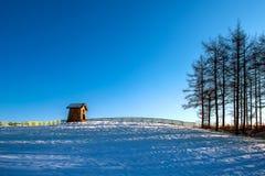 Cottage di legno nell'inverno Allevamento di pecore di Daegwallyeong in Gangwondo Immagine Stock Libera da Diritti