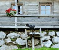 Cottage di legno nelle montagne delle alpi Fotografia Stock Libera da Diritti