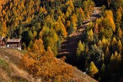 Cottage di legno tradizionali in autunno vicino al Cervino, Svizzera Fotografia Stock